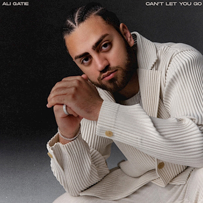 Ali Gatie - Can't Let You Go